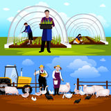 Farmers Gardeners 2 Horizontal Flat Banners Set. Forcing tunnel planing gardeners and sheep and  geese feeding farmers 2 flat horizontal banners isolated vector Royalty Free Stock Photos