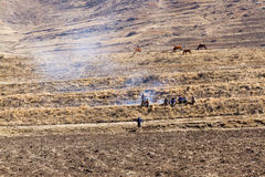 Farmers Gather at Fire in Field. LERIBE DISTRICT, LESOTHO - AUGUST 10, 2016: Basotho men gather on a rural hillside field while horses graze in the background on Stock Images