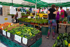 Farmers Greenmarket NYC Royalty Free Stock Image