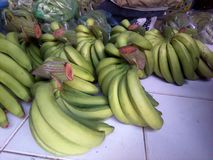 Farmers grow bananas  non-toxic natural green. Farmers grow bananas Use non-toxic natural green fertilizer, planted in northern Thailand, Chiang Mai. In Stock Photography