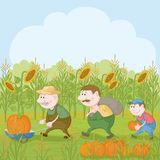 Farmers with the harvest of pumpkins Royalty Free Stock Photo