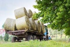 Farmers harvesting hay Royalty Free Stock Photo