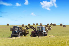Farmers harvesting hay Stock Images