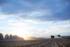 Farmers harvesting a large maize field at sunset. With combine harvesters, tractor and trailer an semi lit by the bright glow of the sun on the horizon Royalty Free Stock Photography
