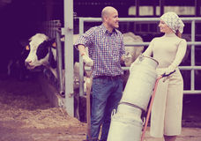 Farmers holding large metallic milk cans. Happy male and young female farmers holding large metallic milk cans in hangar with cows Royalty Free Stock Images
