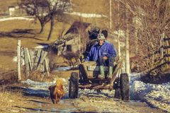 Farmers and horse cart Stock Photography