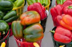 Farmers market. Peppers at the Fresh Market Royalty Free Stock Image