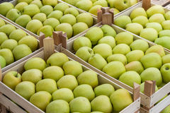 Farmers market apples in a wooden crates Stock Photography