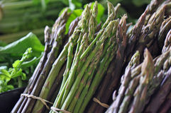 Farmers Market Asparagus Royalty Free Stock Photography