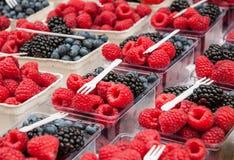 Farmers' Market Berries. Blueberries, blackberries, and raspberries in cartons arranged for sale at farmers' market Stock Photo