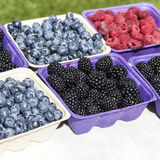 Farmers Market Berries Royalty Free Stock Images