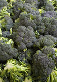 Farmers Market Broccoli Royalty Free Stock Photos
