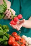 Woman holding fresh vegetables Royalty Free Stock Photos