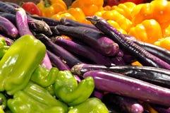 Farmers Market Colorful Veggies. Colorful Veggies at Dunedin, FL Green Market Stock Photo