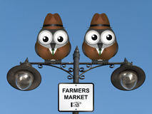Farmers Market. Comical bird farmers perched on a lamppost against a clear blue sky Stock Image