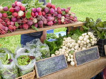 Farmers' Market. Display of local produce at outdoor farmers' market Stock Photography