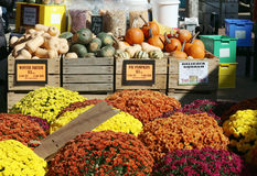 Farmers market display Stock Photography