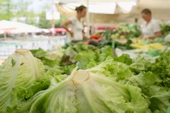 Farmers market. Fresh green lettuce and vegetables on farmers market Stock Photography