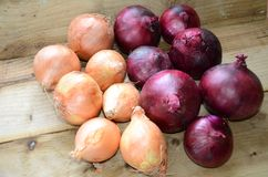 Farmers market, fresh onions on rustic wood bench, Stock Photography