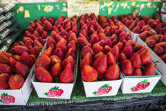 Farmers Market fresh red organic strawberries Stock Photo