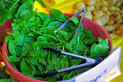 Farmers Market fresh Spinach Royalty Free Stock Image