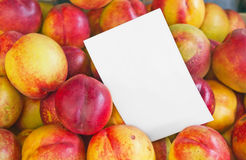 Farmers Market Nectarines Royalty Free Stock Photos