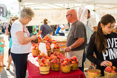Farmers market. Parker, Colorado, USA-July 26, 2015. Local produce at the summer farmers market in the city stock photo
