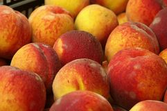 Farmers Market peaches Stock Photos