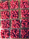 Raspberries at a farmers` market, a physical retail marketplace intended to sell foods directly by farmers to consumers. A farmers` market is a physical retail royalty free stock photos