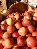 A bushel of fresh red apples at a market, a physical retail marketplace intended to sell foods directly by farmers to consumers. A farmers` market is a physical royalty free stock image