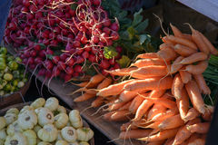 Farmers Market Produce. A variety of produce offered for sale at the Minneapolis Farmer's Market including radishes, carrots, and bitter ball royalty free stock photos