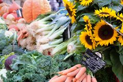 Farmers market Provence France vegetables and sunflowers. Farmers market Provence France vegetables and sunflowers on display Royalty Free Stock Photos