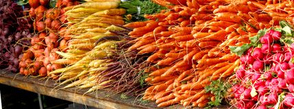 Farmers` Market - Root Vegetables - Beets, Carrots, Radishes stock images