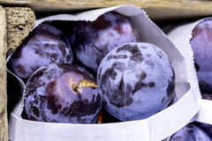 Farmers Market selling plums in small bags Stock Photography