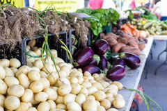 Farmers market. Summer farmers market on Main Street in Parker, Colorado stock photography