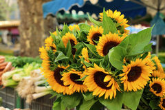 Farmers market stall sunflowers stock photography