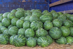 Farmers market and a truckload of watermelons. At the farmers market local growers come and sell their freshly picked crops at reasonable prices Royalty Free Stock Photo