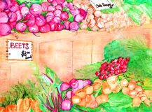 Farmers market watercolor. Watercolor of fresh vegetables at a farmers market Stock Photos