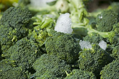 Farmers Mkt pile of brocolli Royalty Free Stock Photo