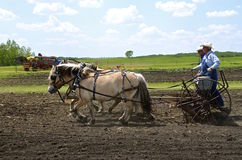 Farmers planting oats with a horse pulled drill Stock Images