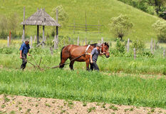 Farmers plowing with horse Stock Photos