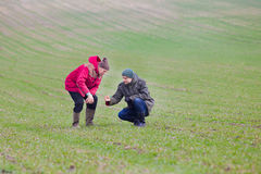 Farmers with seedlings. Two farmers monitoring seedlings in the field in winter time Royalty Free Stock Photos
