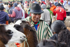 Farmers selling animals Stock Photography
