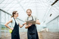 Farmers with tablet in the glasshouse royalty free stock image