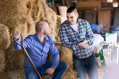 Farmers talking in a barn Stock Images