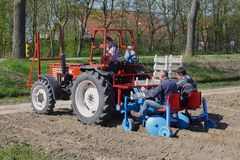Workers on a tractor are planting bulbs in the soil,  Noordoostpolder, Flevoland, Netherlands Royalty Free Stock Images