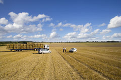 Farmers and trailer with straw bales in sunny, rural field Stock Photos