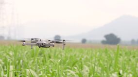 Farmers use drones to monitor agricultural produce.