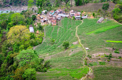 Farmers' village and fields in Himalayas Stock Images