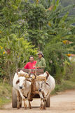 Farmers in Vinales Royalty Free Stock Images